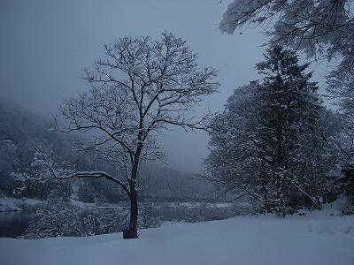 s-3月3日の雪景色 030.jpg