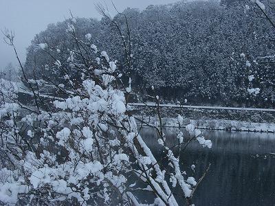s-3月3日の雪景色 040.jpg